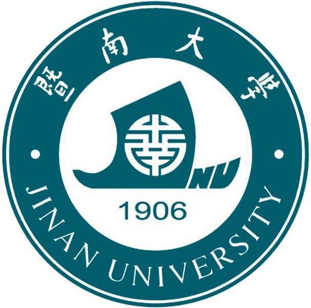 暨南大学纳米光子学国际青年学者论坛(2020广州)